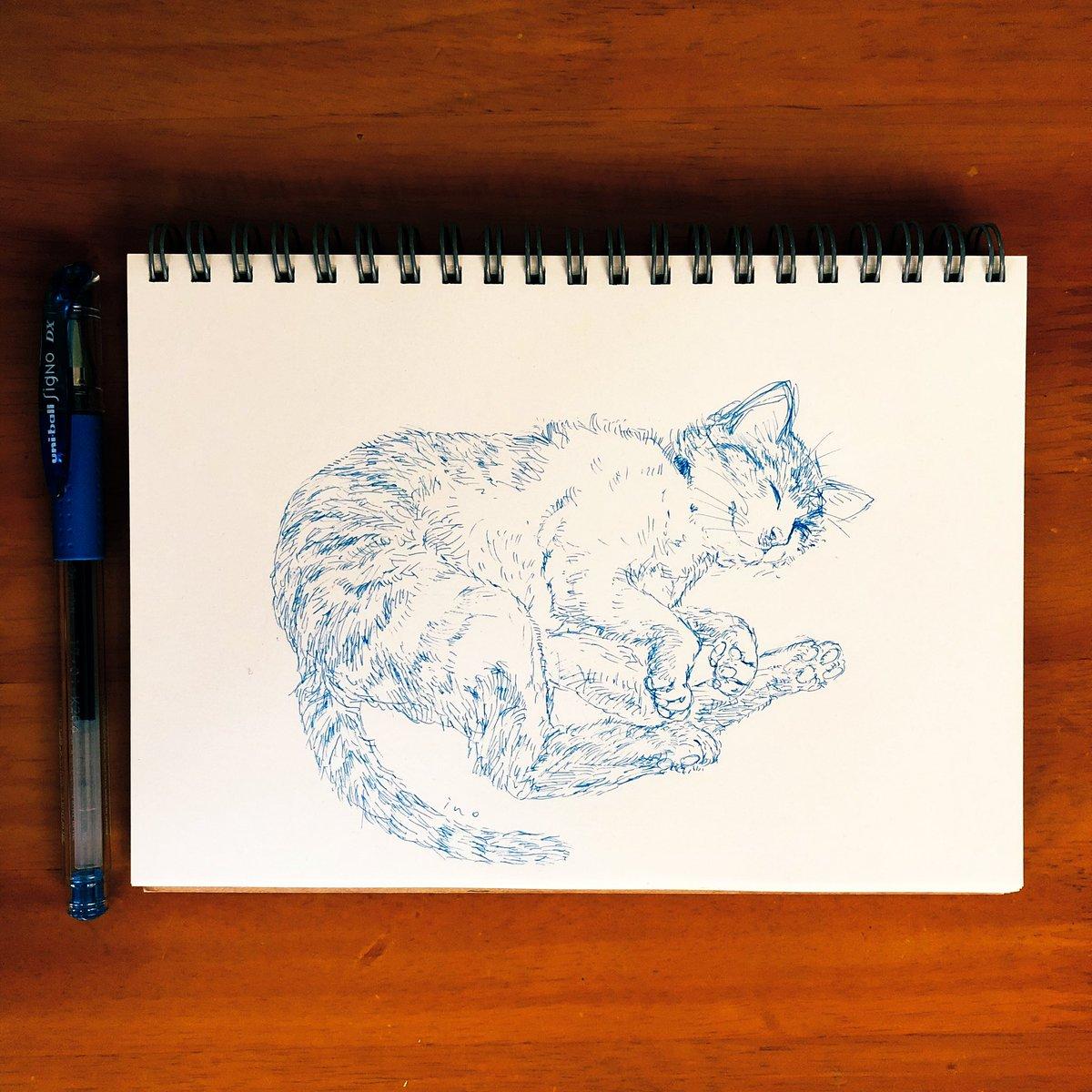 このもふもふのお腹に顔を埋める至福たるや。 #イラスト #一発描き #ドローイング #アート #アナログ画 #アナログ絵描き #ペン画 #ボールペン画 #猫のイラスト #猫 #シグノ #シグノ大好き #Illustration #drawing #artwork  #Illustrationgram #Analogpicture #Pendrawing #Ballpointpendrawing