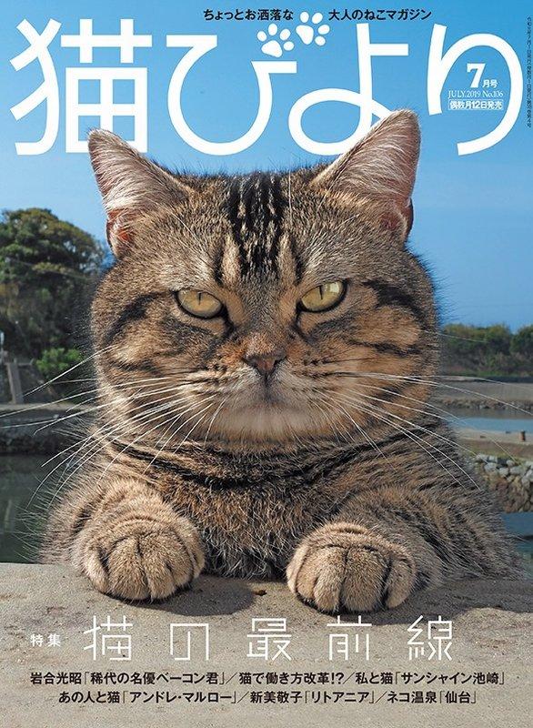 『猫びより』表紙コレクション #まとめ (創刊号(2000年6月)から最新刊の歩み)更新致しました。最新号 『猫びより』7月号は、本日(6/12(水))発売です #猫びより #neko #猫 #nekobiyori