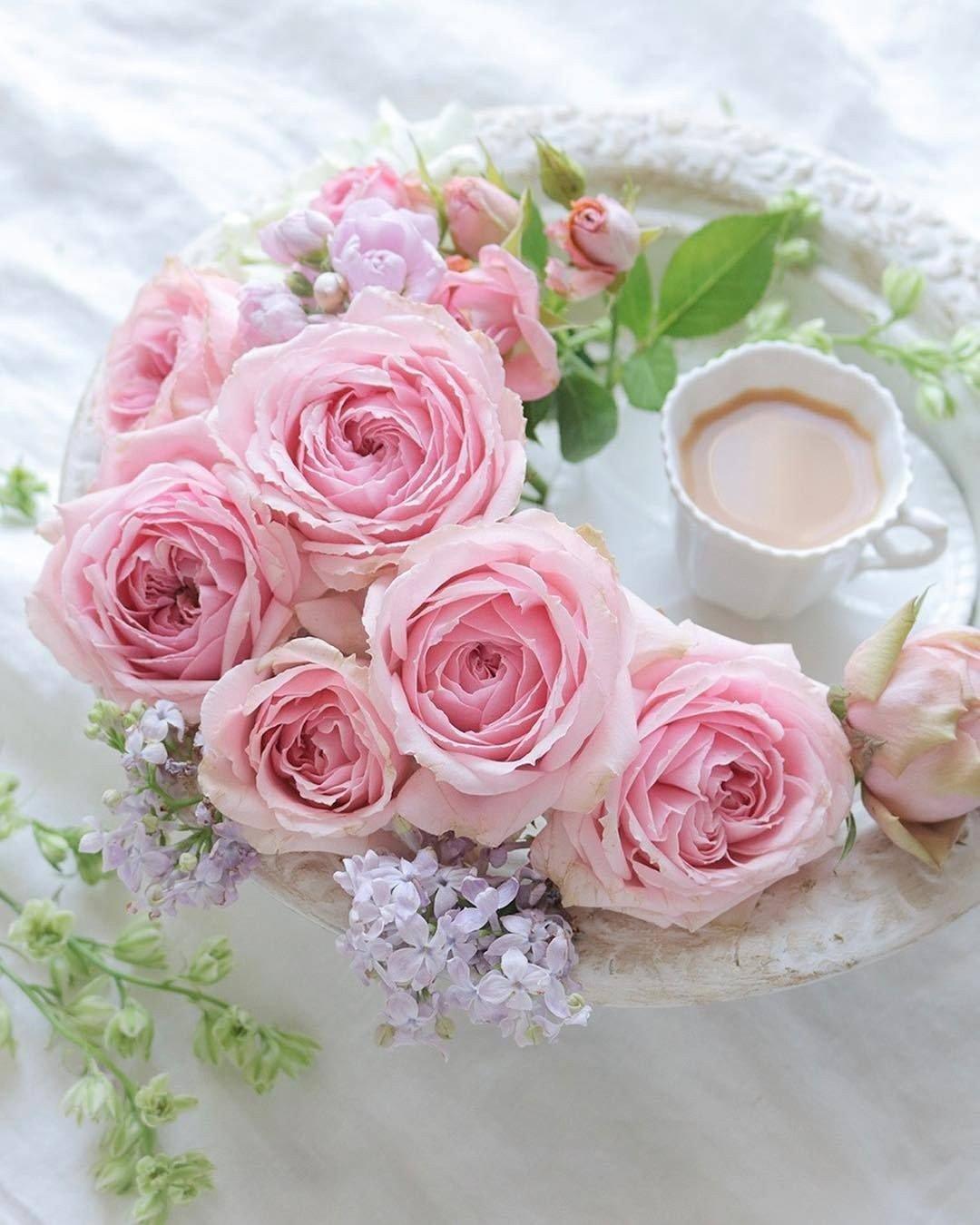 открытка розовое утро они смогут