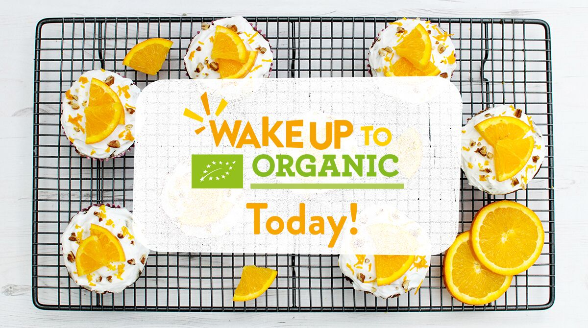It's #WakeUpToOrganic day! Enjoy a free organic mini breakfast at indie stores across the UK.   Find your nearest event, here:  https:// feedyourhappy.co.uk/wakeup     <br>http://pic.twitter.com/3OUTINw72q