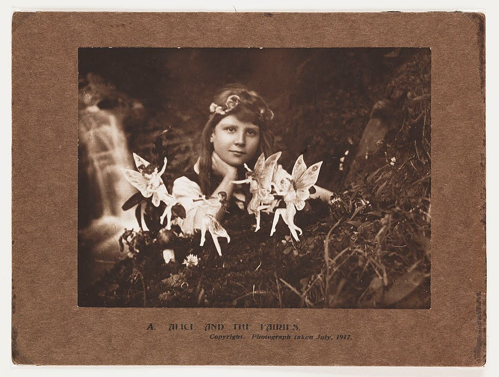 'Apparently it was the biggest hoax of the early 20th Century.''So the photo is a complete #ruse?''Yep. They became known as The Cottingley Fairy photos. It was all done with cardboard cutouts.''Wow. The human looks so real though,' said Buttercup the Pixie.#vss365a