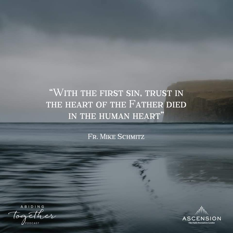 """""""Trust and trust alone should lead us to love."""" ― St Therese of Lisieux ⠀⠀⠀⠀⠀⠀⠀⠀⠀ The Father's love is a love we can trust.  He is good.  He is trustworthy.  He is love.   Podcast link on spiritual fatherhood with @frmikeschmitz & @onegroovynun   https://media.ascensionpress.com/podcast/interview-with-fr-mike-schmitz-the-heart-of-a-father/…"""