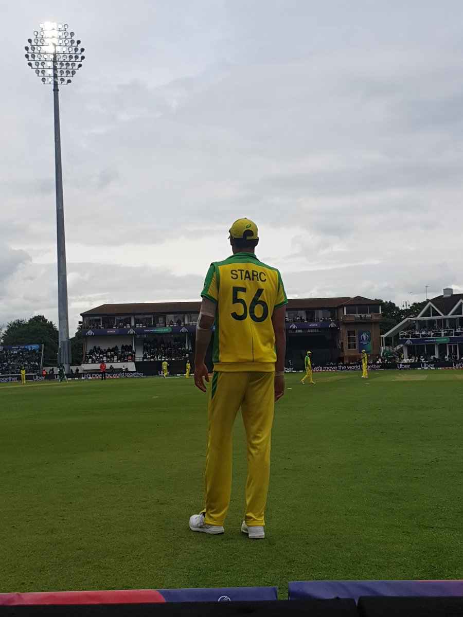 """Someone from the crowd asked Starc, would you come to play next PSL? """"NO"""" Mitchell Starc replied#PAKvAUS"""
