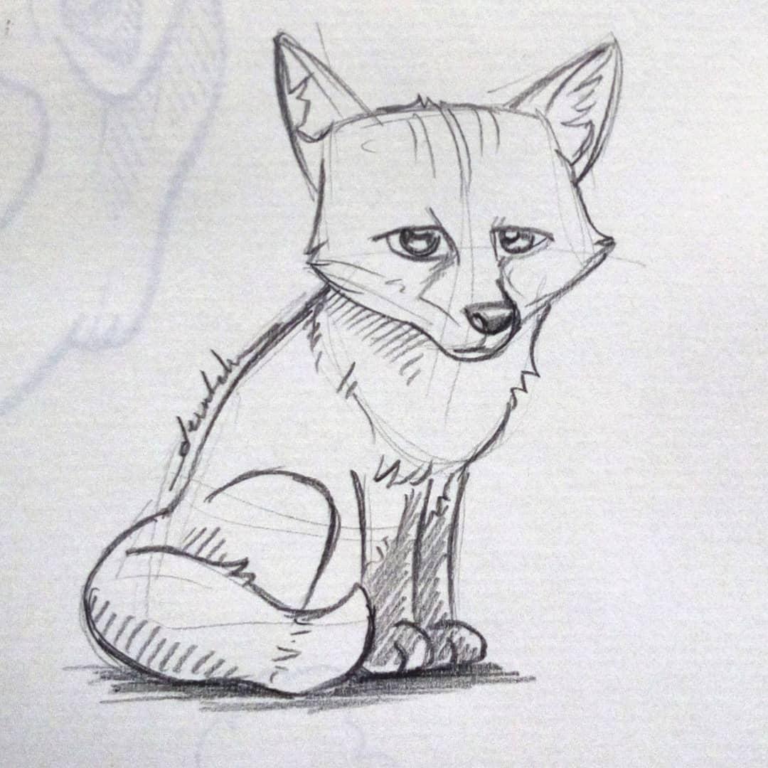 Fox pup #dailyart #dailyillustration #animal #fox #pup #pencil #nature https://t.co/4fvOIcWKv3