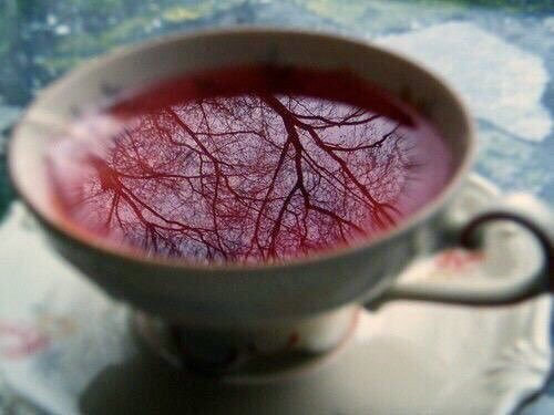 ❦Brew a cup of joy, not by reflecting the world around you, but by coloring that reflection with the warmth of your love and and the richness of your soul. ~Anne Scottlin #happiness #love #motivationalquote #pic #anon #quote  http:// upbydesigncoaching.com    <br>http://pic.twitter.com/jLHIEOZBl9