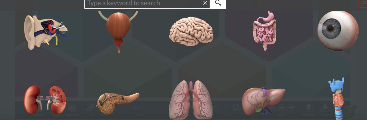 LOVE the new human body stickers in @Buncee! Already thinking of ways to use these next year :).