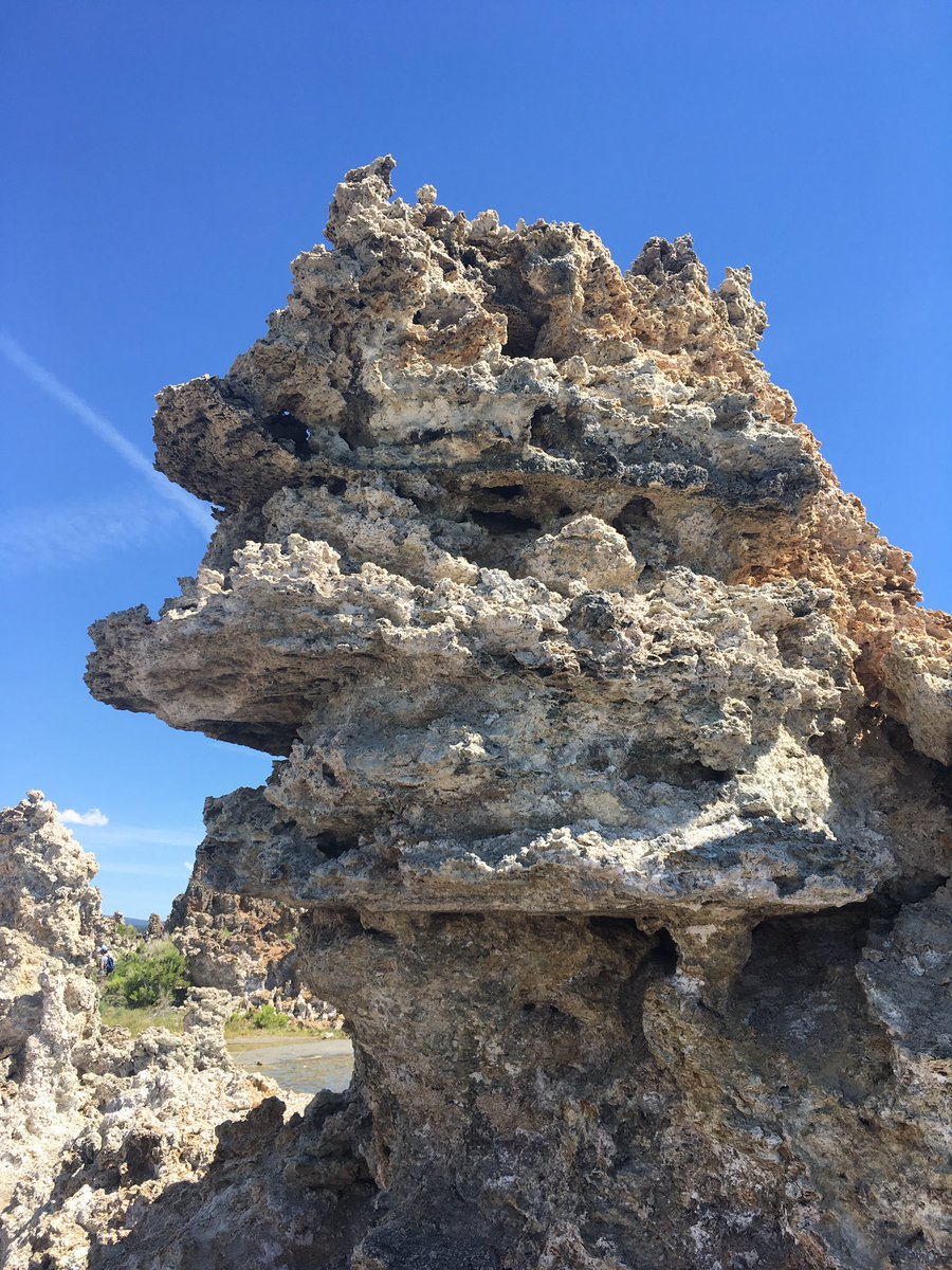 the flanges (overhanging ridges) on this tufa are spectacular! Side view of the tower and bottom view of one flange. Very reminiscent of the flanges at the pescadero vent field in this video: https://m.youtube.com/watch?v=8RhOrKrNv2M&t=129s… #GeoBio19