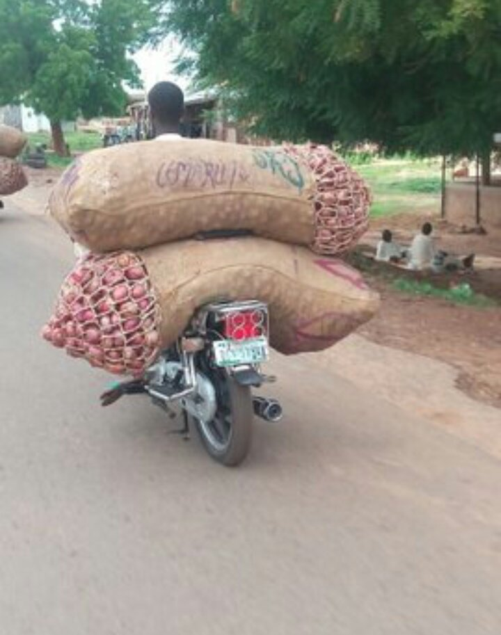 #MSMEThursdayWithDipo. Hello twitter, I am Ayoola, a corp member serving in sokoto state. I sell onions in sacks and its very affordable.  I deliver all round Nigeria basically trying to figure out how I can deliver to other parts of the world.  Please retweet. <br>http://pic.twitter.com/O0iSoJiL0W
