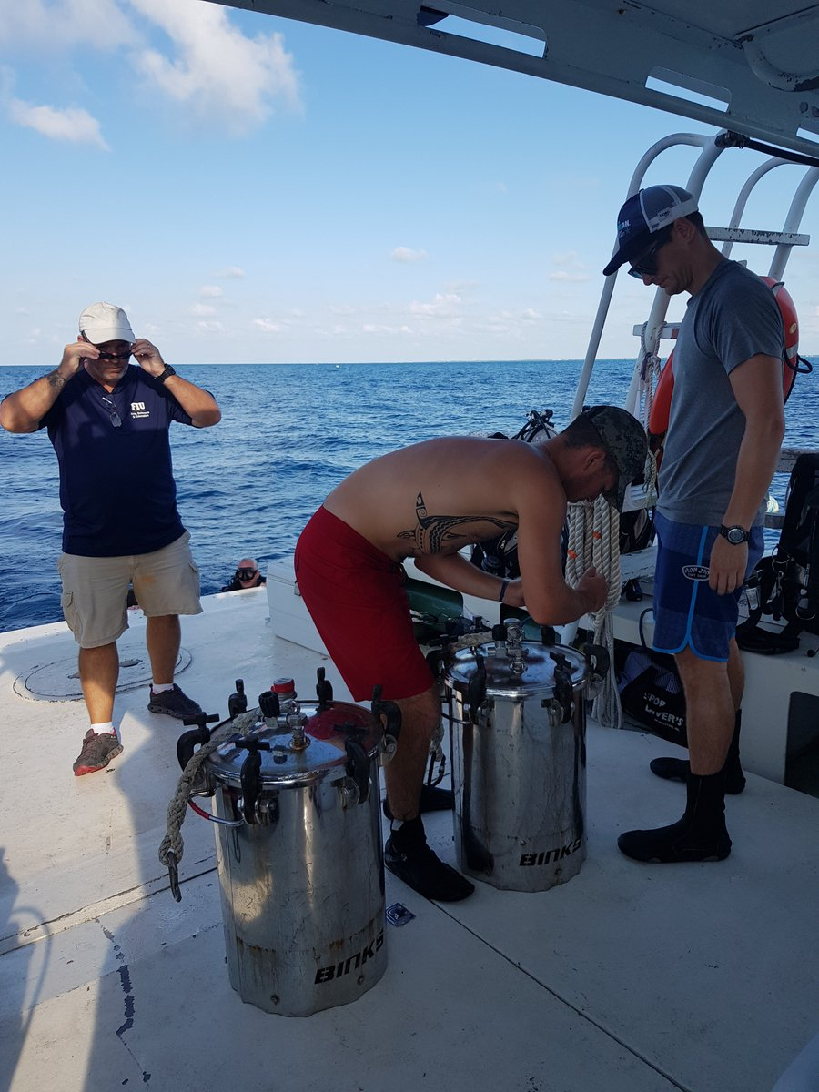 And this is the first potting of the day. The awesome folks of Aquarius Reef Base are bringing down some of our stuff. #NEEMO23