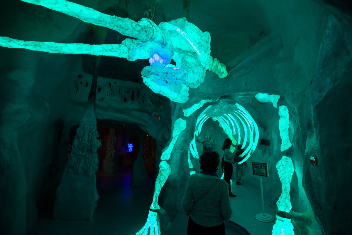 Crawl, climb, explore, and immerse yourself in a whole new world at Santa Fe's Meow Wolf. Discover the maze of colorful rooms, dark passageways, and one-of-a-kind, interactive exhibits of this incredible artistic playhouse. #NewMexicoTrue