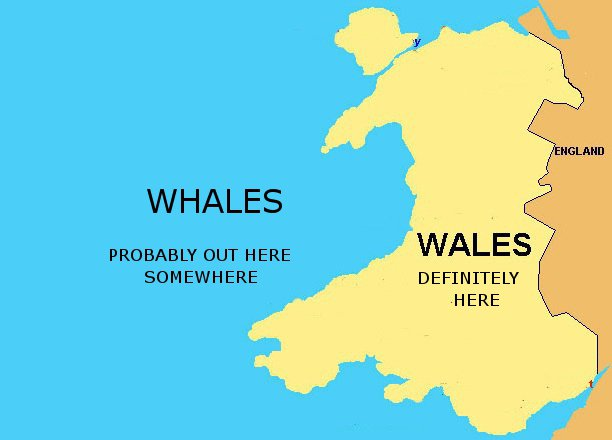 @arsimmons_rcn's photo on Wales