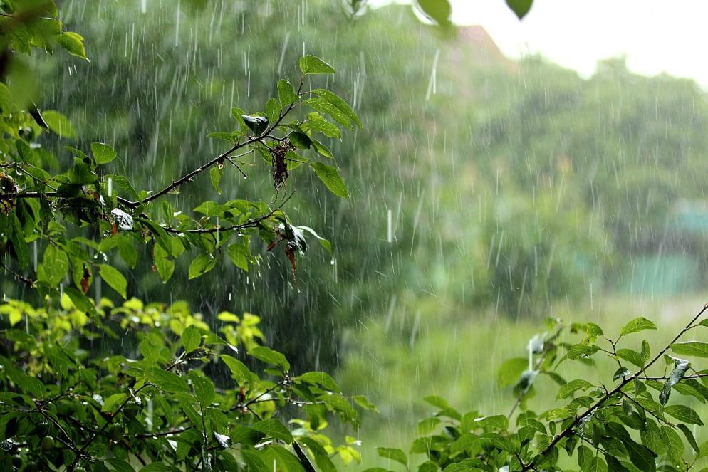 доброе утро после дождя картинки описание