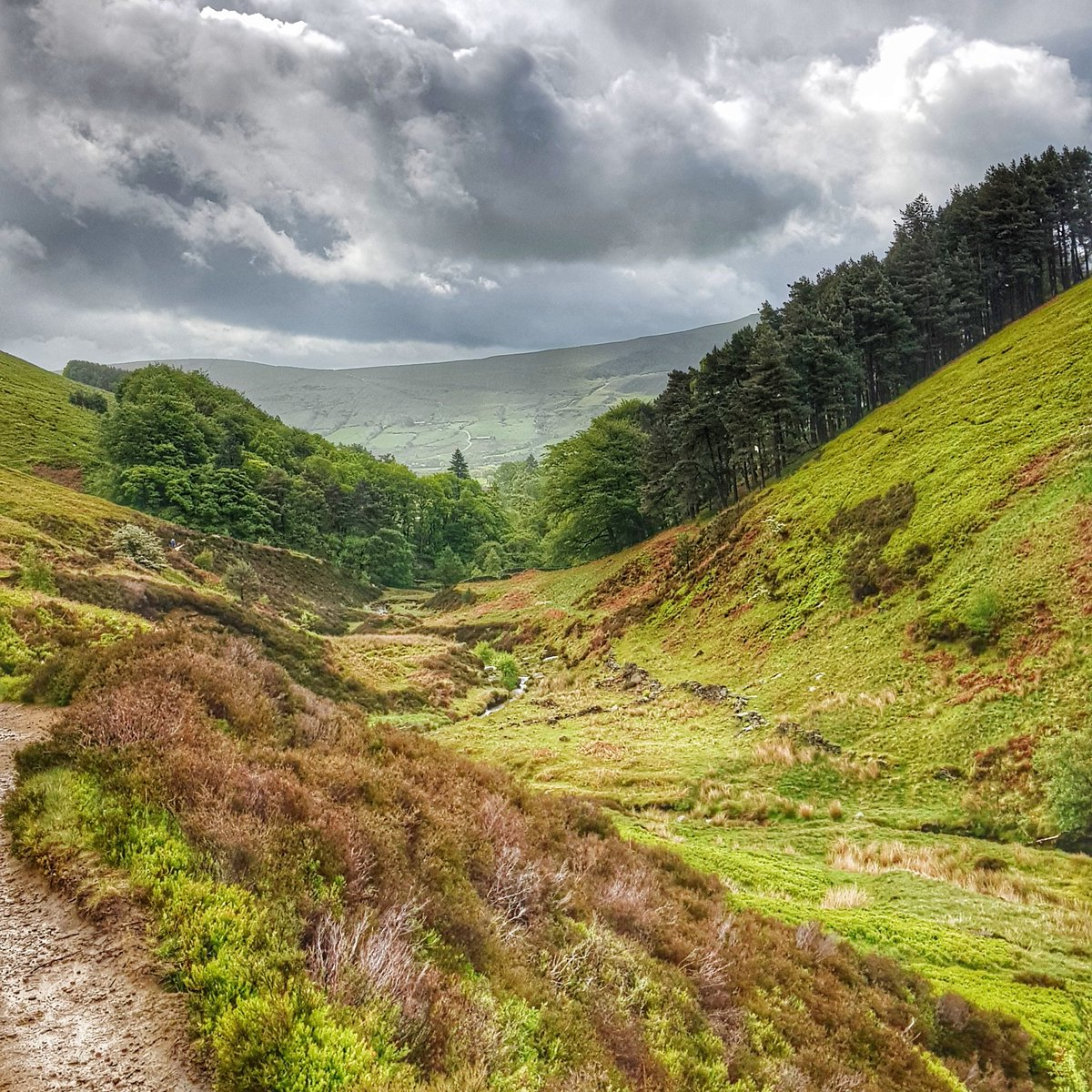 Its worth the #climb for the #fantasticview #edale #derbyshire #walkingwiththedogpic.twitter.com/n4WsCMdsca