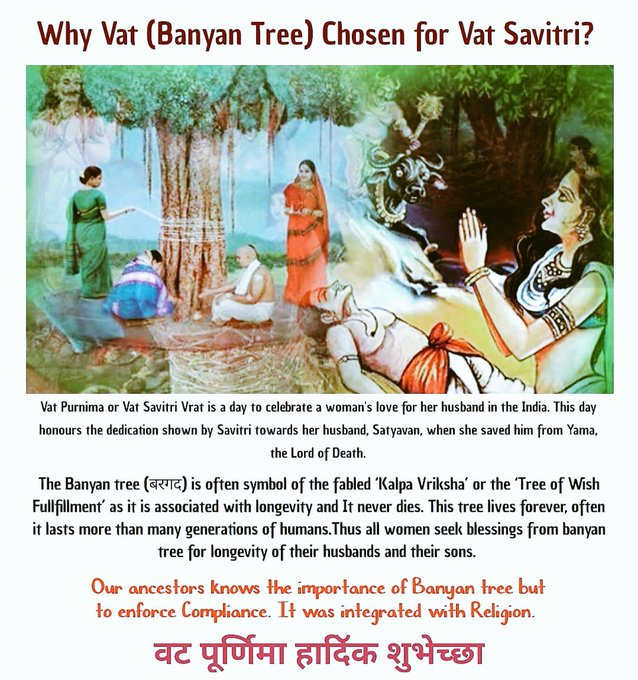 According To Legend Great Savitri Tricked Lord #Yama, The Lord Of #Death, And Compelled Him To Return The Life Of Her #husband #Satyawan. Hence #married Women Observe Vat Savitri Vrat For Well-being And Long Life Of Their Husband.  IMAGES, GIF, ANIMATED GIF, WALLPAPER, STICKER FOR WHATSAPP & FACEBOOK