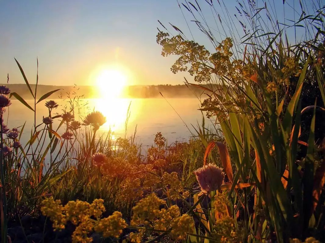 Открытки с добрым утром восход солнца, поздравления днем