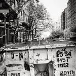 Image for the Tweet beginning: Dumpster, Park Avenue: day 3496