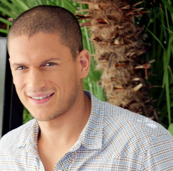 Happy birthday to this fellow gay light bright bae Wentworth Miller!