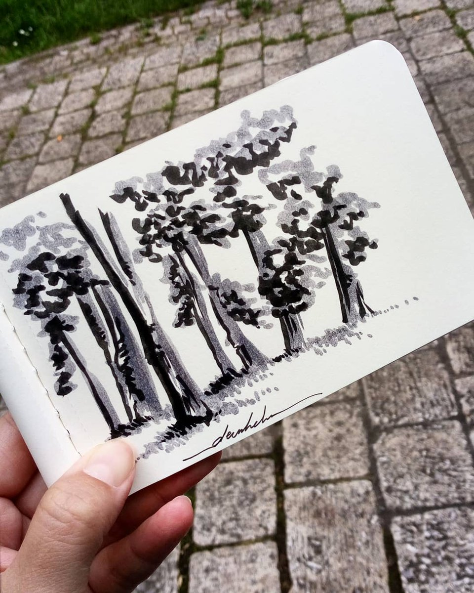 Line of trees 🌳 #dailyart #dailyillustration #trees #nature #blackandwhitedrawing #park #parkview https://t.co/mCnzy8WX6U
