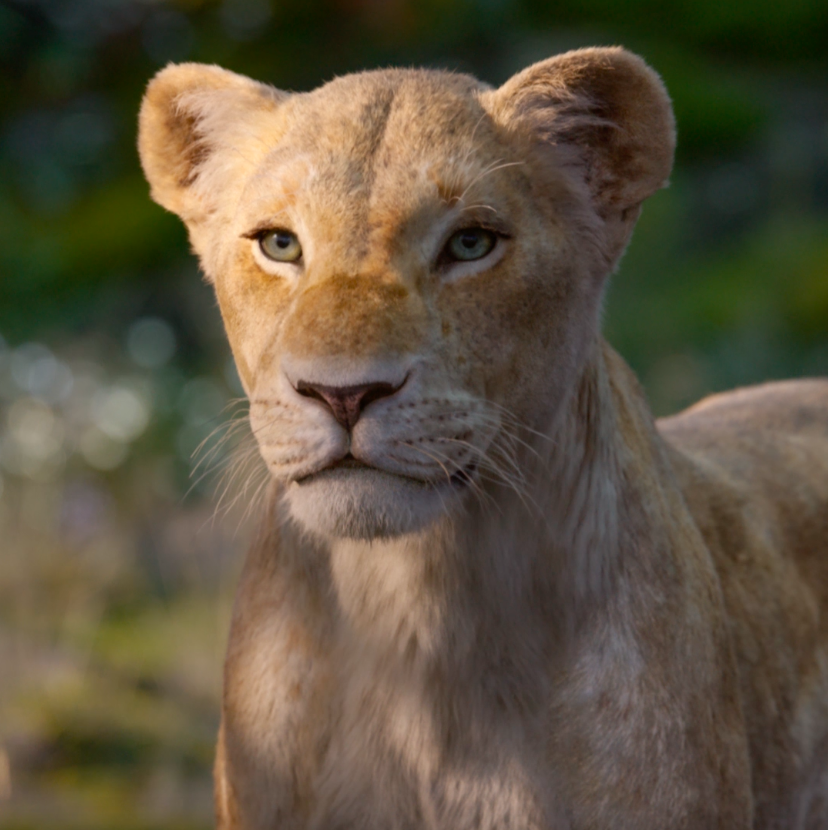 You have to take your place as king. #TheLionKing