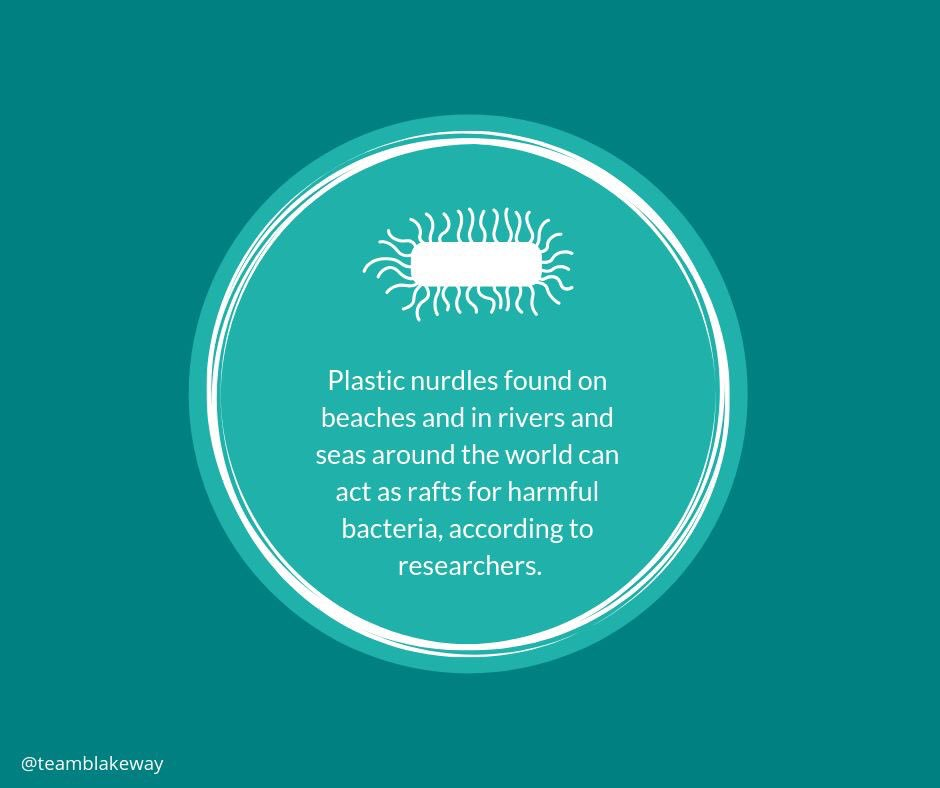 Lets save our oceans✌🌞and the world environmental science lets make that change🌞✌