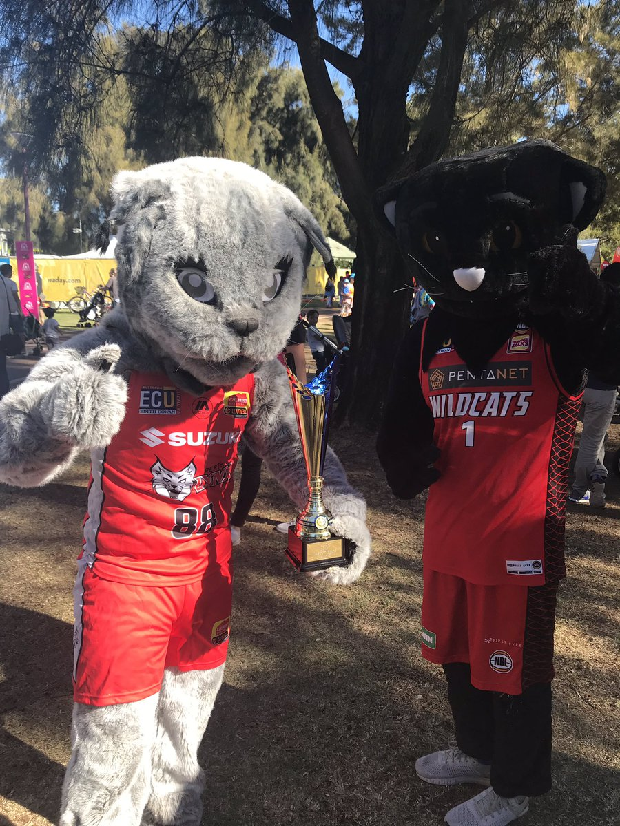 Layla and Wilbur with her winning thophy. 2 kitties from Perth's greatest basketball teams #WADay #WADay2019 #wadayfestival #perth #burswood #mascot #mascotrace @PerthLynx #mascots #laylathelynx #basketballmascot #redarmy @PerthWildcats #wilburthewildcat #nbl #mascothunt