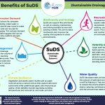 #WorldEnvironmentDay #SuDS create a more #natural #water cycle and have lots of additional benefits too !!  https://t.co/4D6rTOZUJA  #biodiversity #Pollution