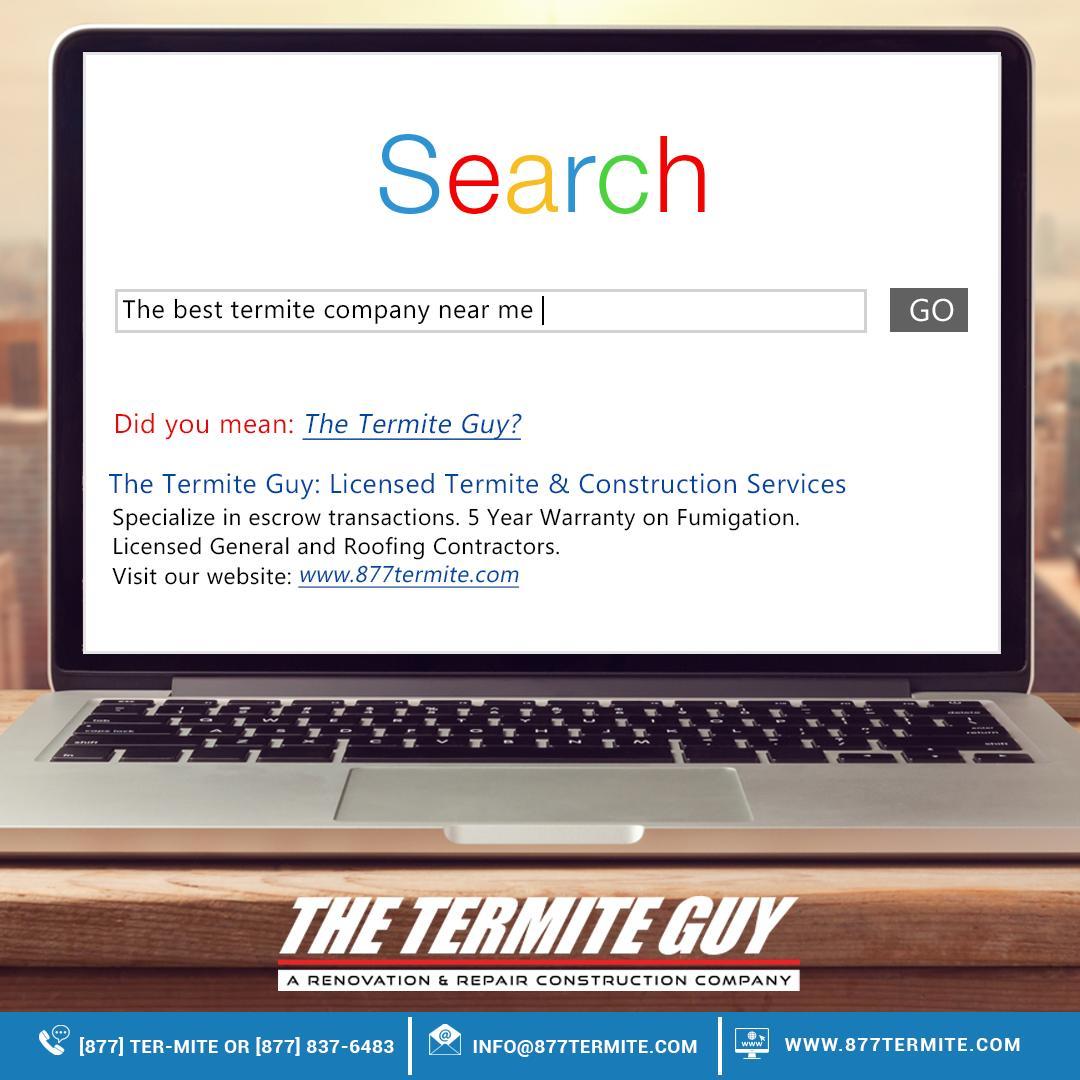 The Termite Guy (@termiteguythe)   Twitter