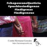 Image for the Tweet beginning: Apoyo a las @hermanasgonzal1 en