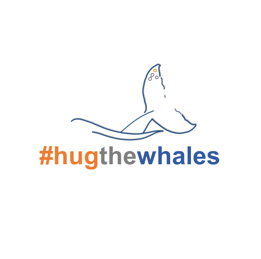 Donations are still welcome https://t.co/HTqnnM1ENL Thank you for your support so far @FBMH_UoM @UoMPharmaOpt @UoMGraphene - we have reached the minimum pledge 👏🥳👍 and the project will go ahead 🐳