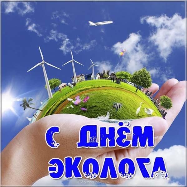 Фото день эколога 5 июня, открытки рождением ребенка