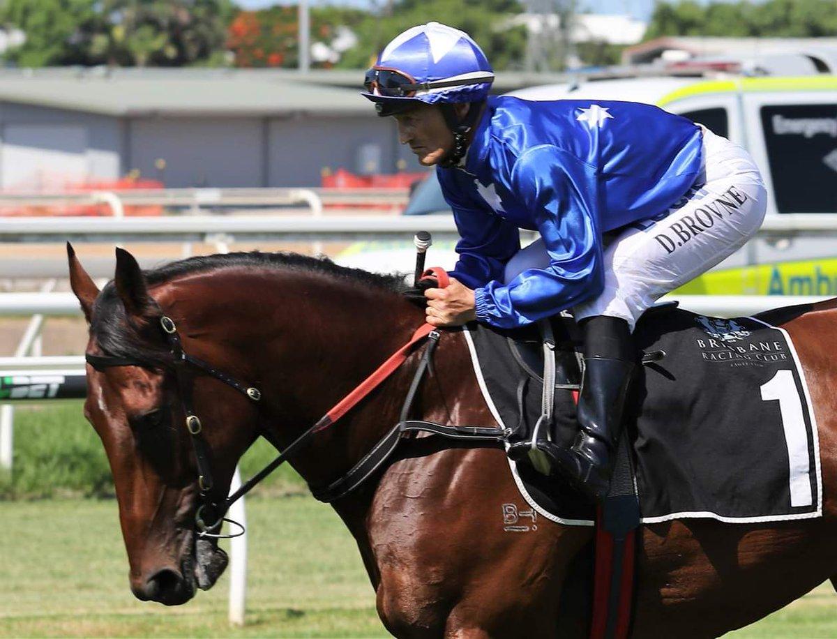 BROWNIE'S BLOG  http://www.horseracingonly.com.au/racing-article.aspx?id=3890… @horseracingonly @blake_shinn @zpurton @BrisRacingClub @tabcomau