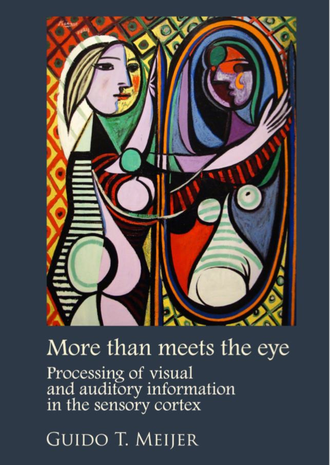 Today I'll defend my PhD thesis 'More than meets the eye: processing of visual and auditory information in the sensory cortex'. The days of pretending to be a postdoc are almost over!  Digital version here: https://dare.uva.nl/search?identifier=893306d3-a335-4048-96d1-cfccf42c6852 …