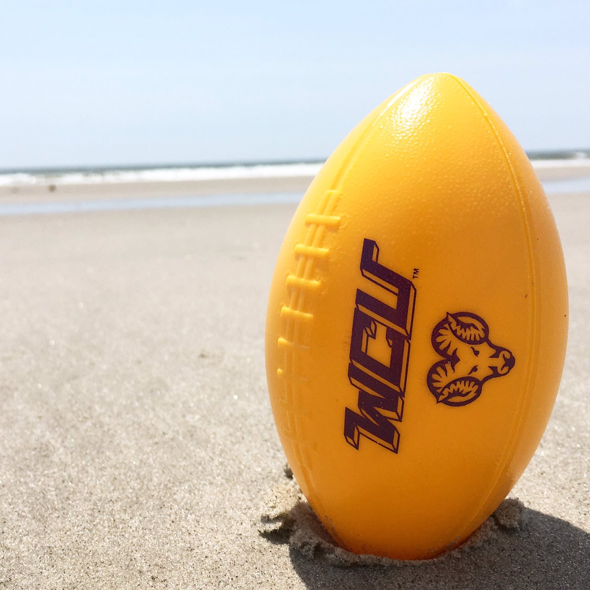A few of our favorite things 🏖🏈🐏 #RamsUP #SummerRam
