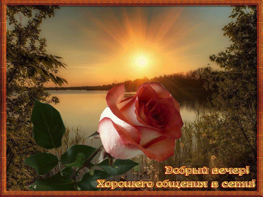 Открытка добрый вечер природа