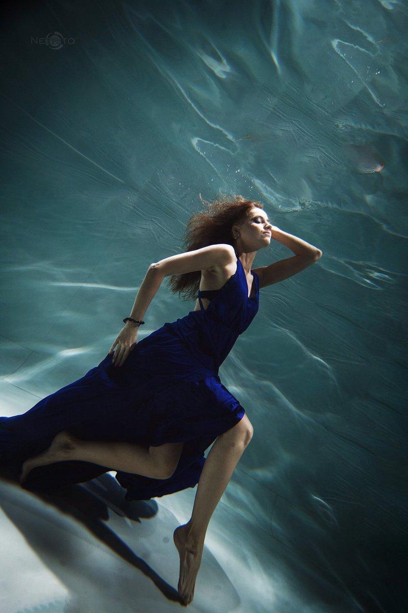 фотографы ростова подводная съемка широкопалый раки природе