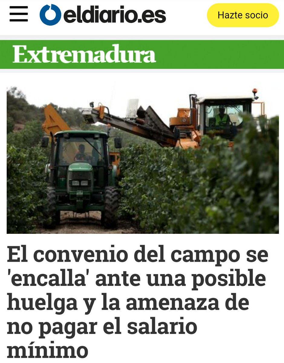 Exigimos la aplicación del SMI a jornaleros y precio digno a agricultores @JoaquinMaciasIU @EvaGSempere m.facebook.com/story.php?stor…