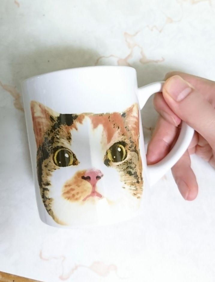 test ツイッターメディア - 自分家の猫に似てると、このチョットえらそうな顔こそ可愛いっ😍みたいになる不思議w セリアで購入した、愛猫似のマグカップ💕 #セリア #猫グッズ #猫 https://t.co/pKsflt5ERw