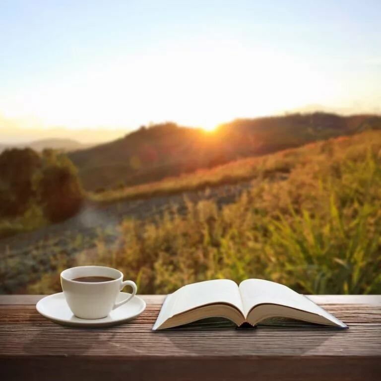 Доброе утро книга картинка