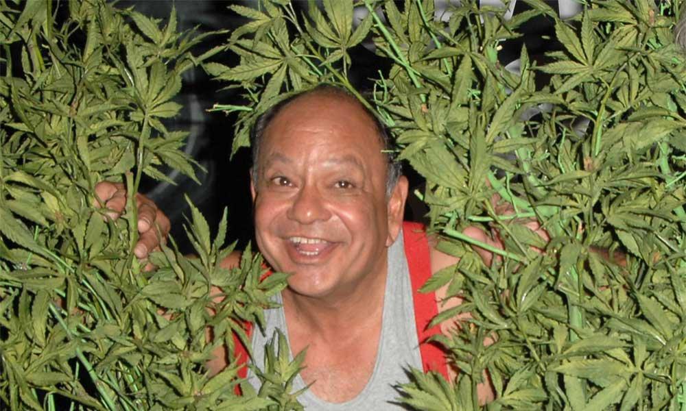Фото людей с марихуаной как вываривать коноплю из чего