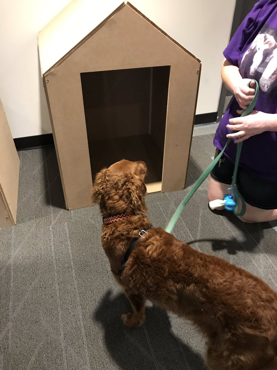 Real Estate shopping. Checking out the new dog houses our geometry students built. <a target='_blank' href='https://t.co/aK4WhZYP7j'>https://t.co/aK4WhZYP7j</a>