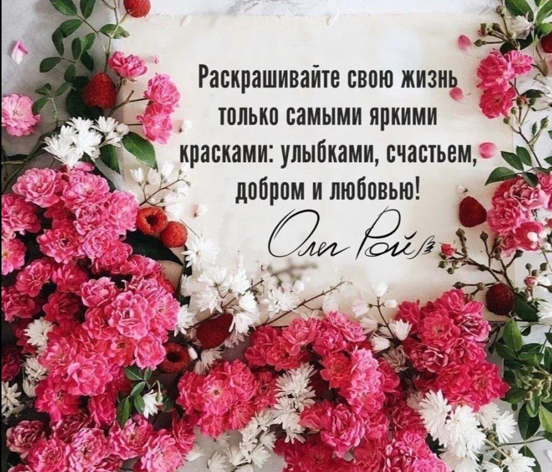 сможете картинка цветок цитатой ковры известны высокой