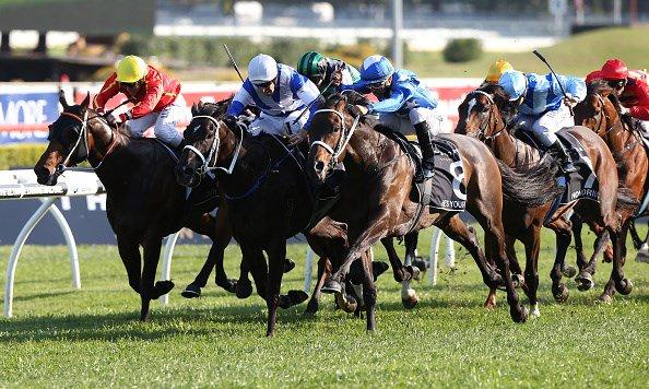 @racingbase's photo on #Randwick