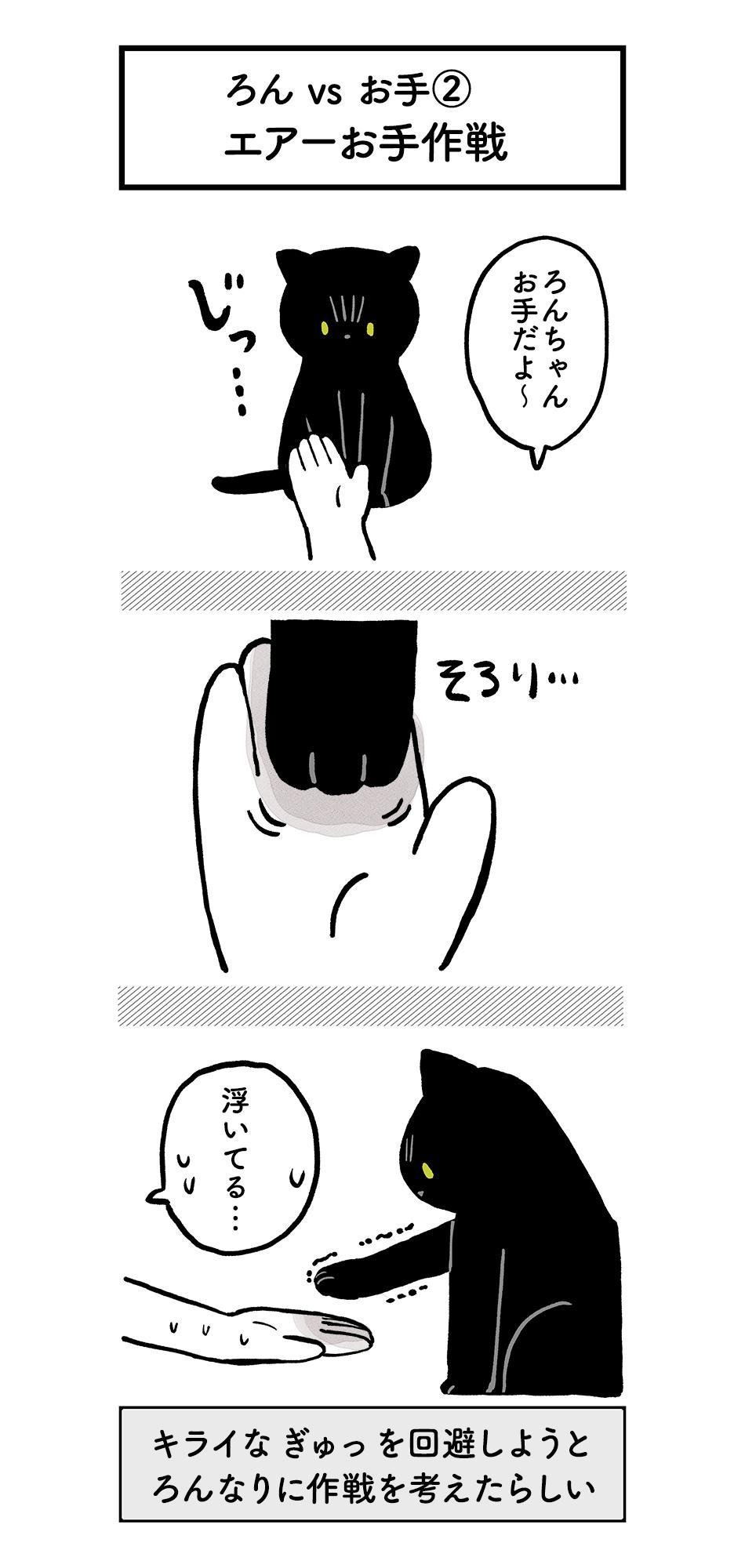 猫なりにお手を試行錯誤!うーんエライ!!