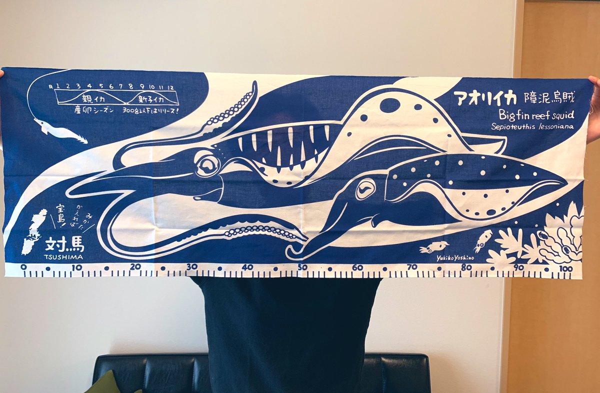 対馬の一般社団法人MITさん(@mit_tsushima )のアオリイカ手ぬぐい。イカ好き心をビシバシ刺激する一品! アオリイカの学名が書いてあったり、卵→稚イカ→親イカ(オスメス)の姿が網羅されていたり。左上にはエギ、下側には釣ったイカの大きさが測れるメモリ付きなので釣り人も必携ですね。