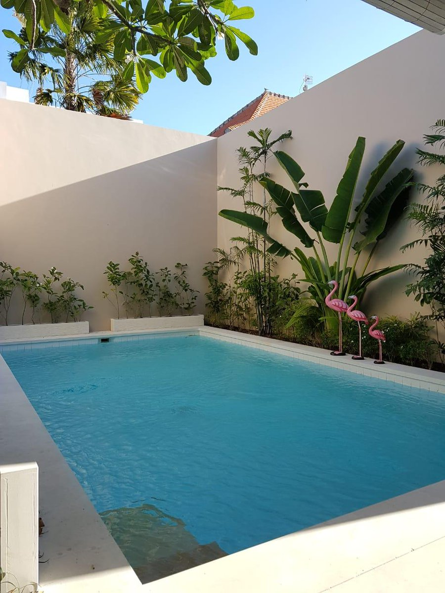 Gunawan Bali Tour On Twitter For Rent Private Villa In Bali Daily Monthly Yearly Starting From 1 Bedroom Until 5 Bedrooms Located In Seminyak Canggu Kuta More Info 6281916211980 Gunawan Bali Villa Rent Property