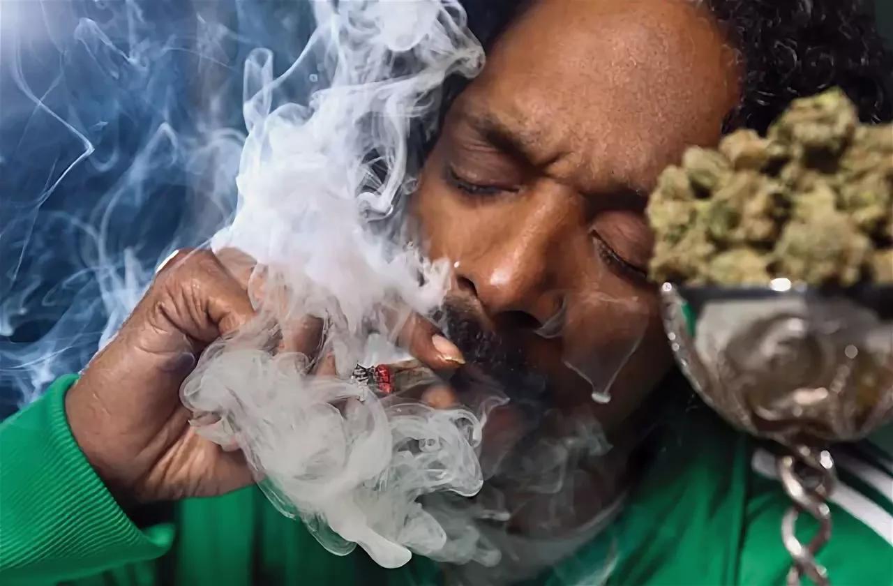 Почему я курю марихуану анимация конопля