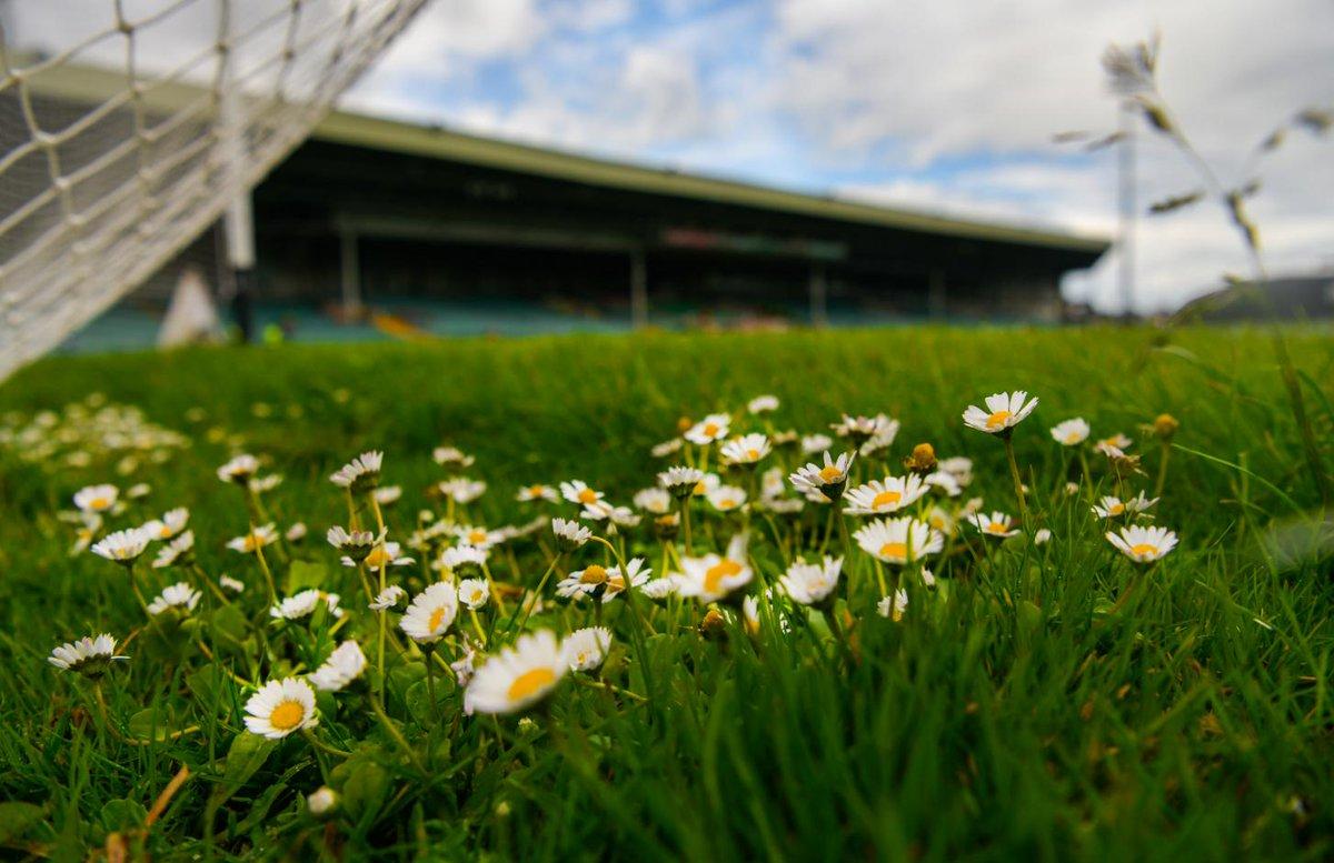 @SkySportsGAA's photo on Championship Sunday