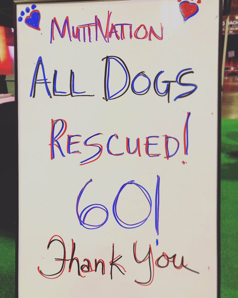 Our hearts are so full!!! All of the #CMAFest dogs have been adopted!!!! We are so happy!!! A special thank you to everyone who joined the #MuttNationMarch with us! Your support makes this possible!  : @reba, @BradPaisley, @FaithHill<br>http://pic.twitter.com/YSuEX1e8pD