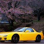 Image for the Tweet beginning: 茨城県笠間市愛宕山にて  #ピカピカレイン春旅 #ピカピカレイン  愛車の写真をよく撮るので、外観はそこそこ気にします。 コーティング剤は、複数の物を試していますが、お勧めできる一品だと思います。