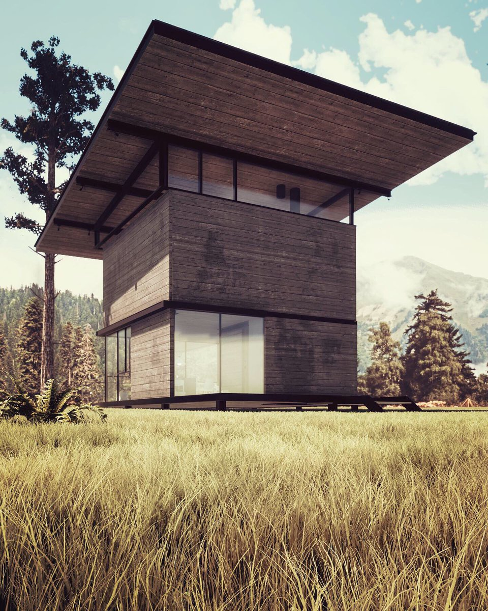 My final visualization, cabin house in forest  Render with
